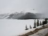 icefields Parkway in May by Roger Holt